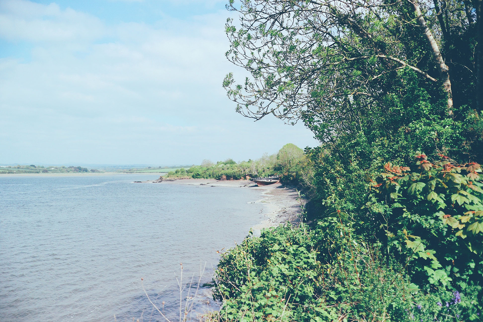 Life this week - giggles, cycle rides and blogging