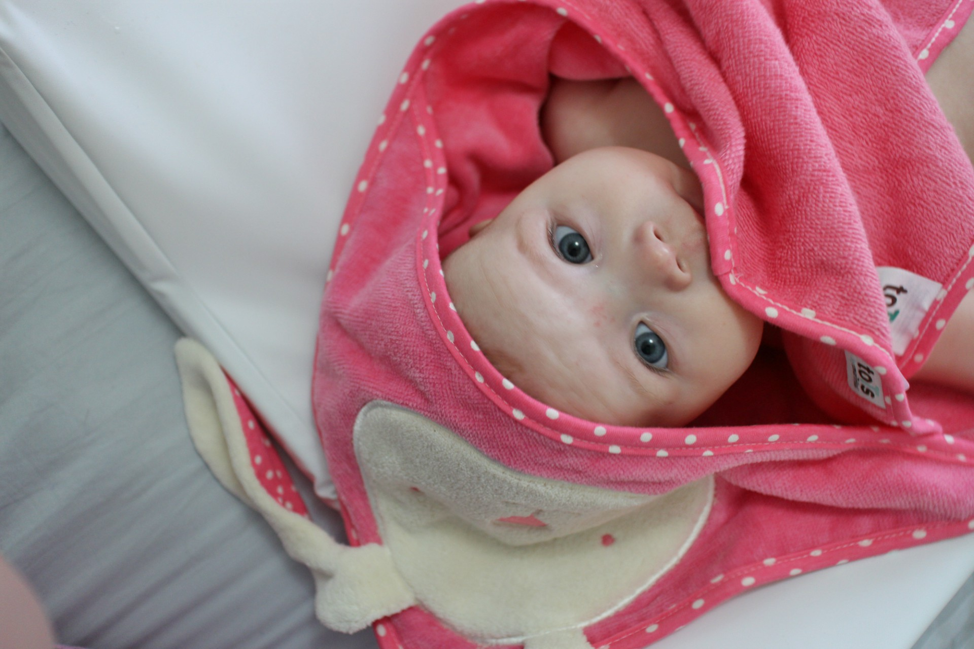 toTs by smarTrike Joy Bunny Hooded Towel Review